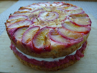 Rhubarb, almond, plum and yogurt cake – a celebration