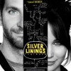 Silver Lined Crabby Snacks – Silver Linings Playbook