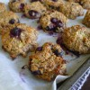 Blueberry Quinoa Cookies